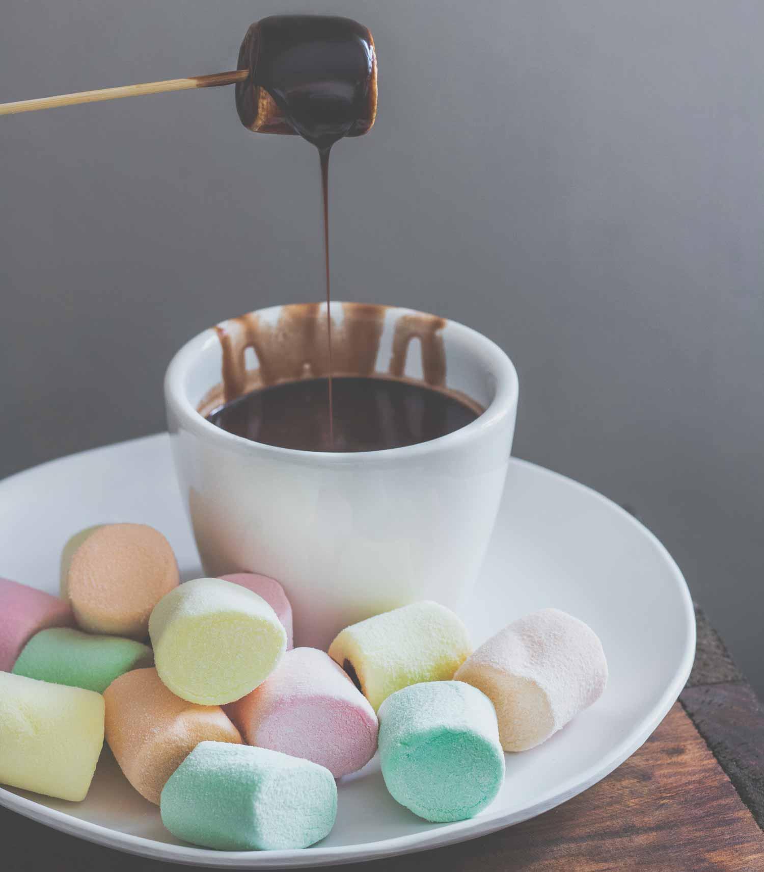 fontaine-a-chocolat-avis